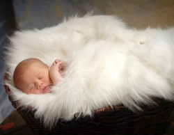 Newborn-Baby-Photographer-10015