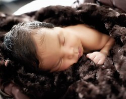 Newborn-Baby-Photographer-10085