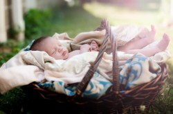 Newborn-Baby-Photographer-10092
