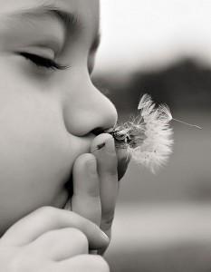 Toddler Photographer Belleville Illinois-10035