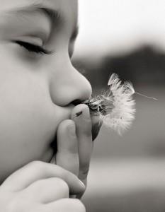 Toddler Photographer Belleville Illinois-10072